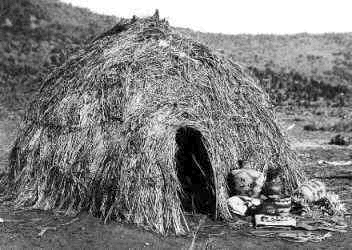 brush_shelter_in_Great_Basin